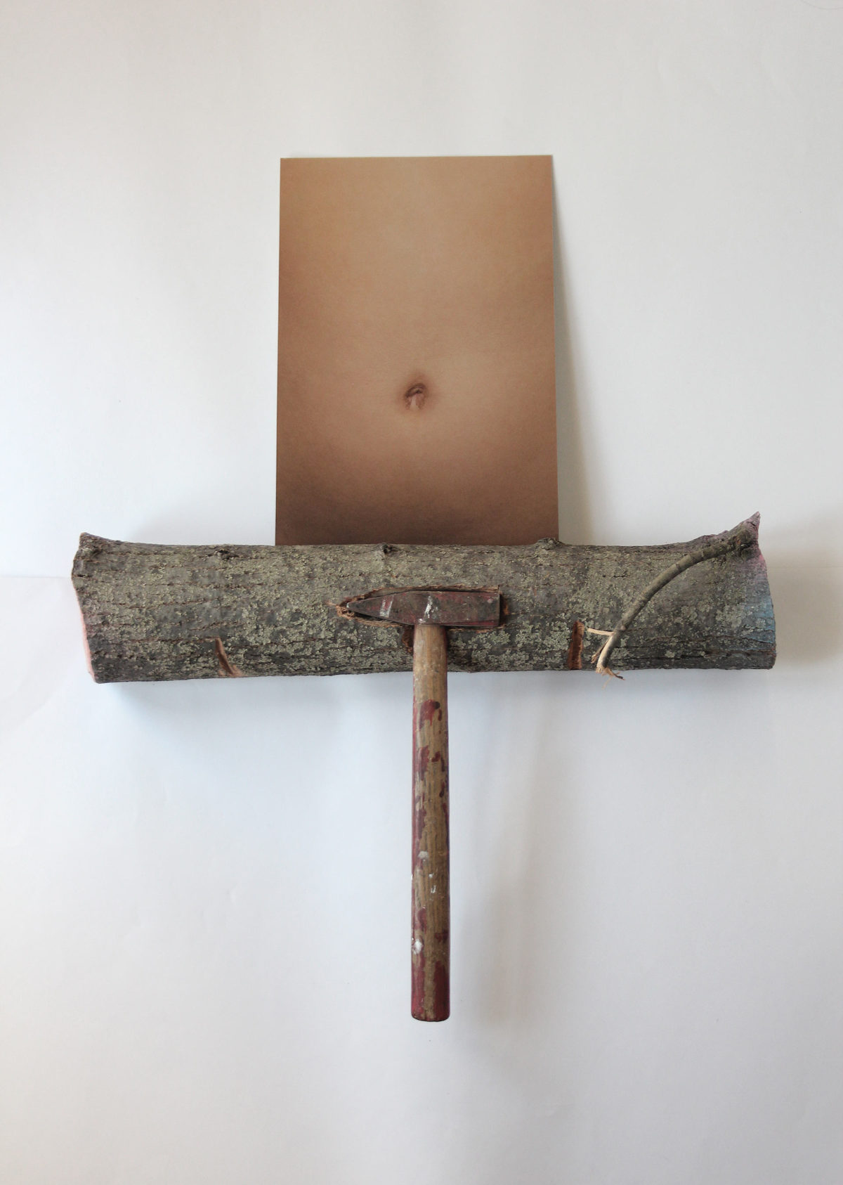 US1802 (Hammer Belly Log)